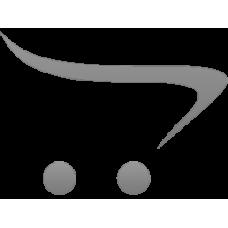 Annual Aevidum Trademark License